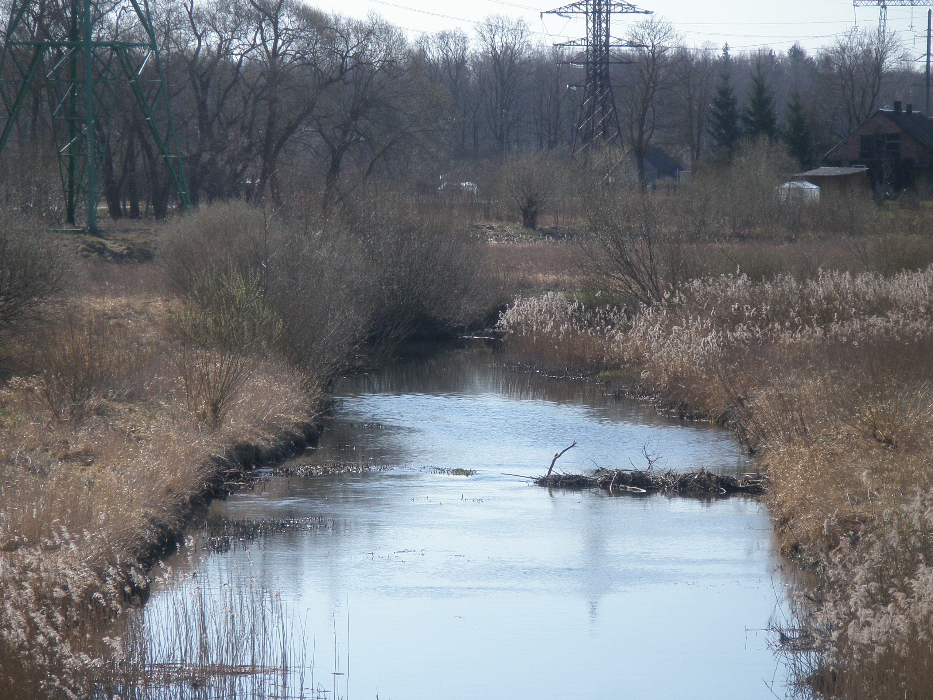 Bebru aizsprosti Platones upē