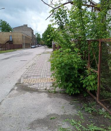 Palīdzības iela